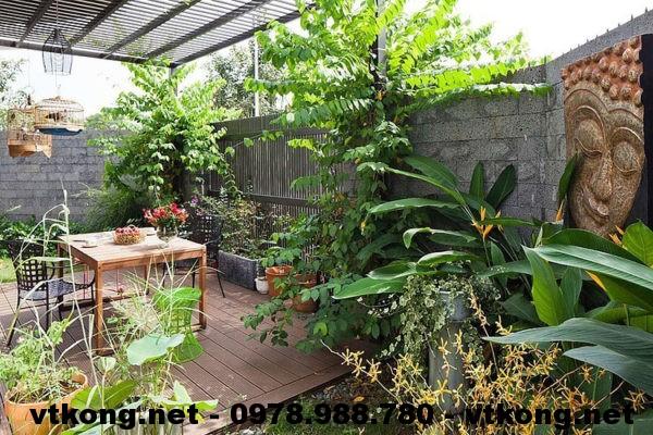 Sân vườn biệt thự 3 tầng NETBT3T10